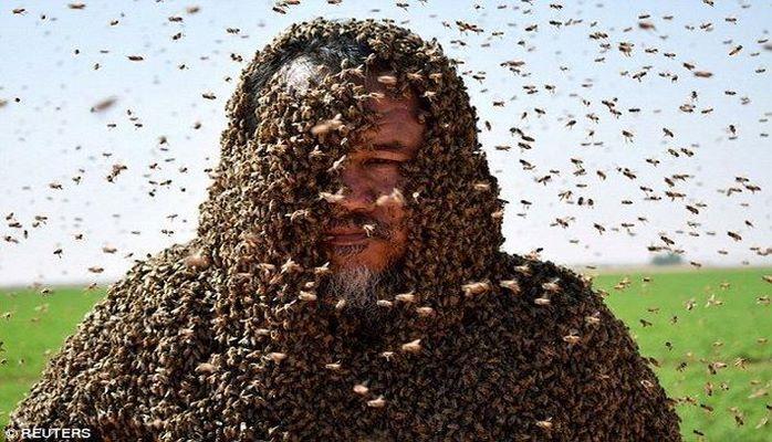 Rekord qırmaq üçün bədənini 20 min arı ilə örtdü