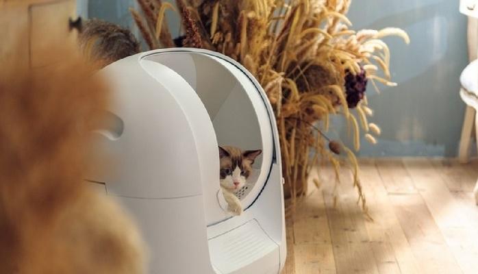 Умный лоток для кошки расскажет о болезнях питомца