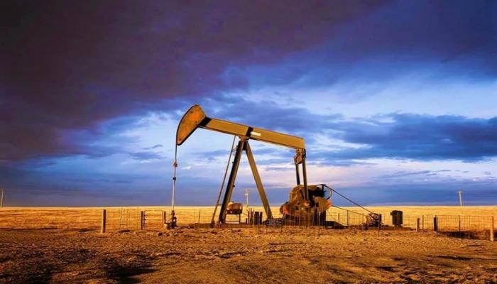 Azərbaycan neftinin qiyməti 46 dollara çatır