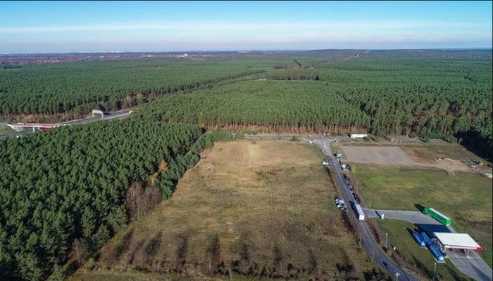 Tesla fabrik açmaq üçün Almaniyada 300 hektar meşəni qıracaq