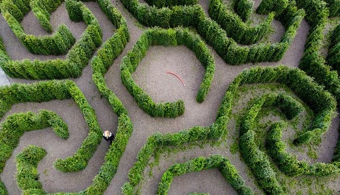 """Riyaziyyatçı botanika bağını unikal """"yaşıl"""" labirint formasında layihələndirdi"""