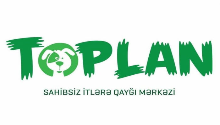 'Топлан' строит на Абшероне новый приют для бездомных собак