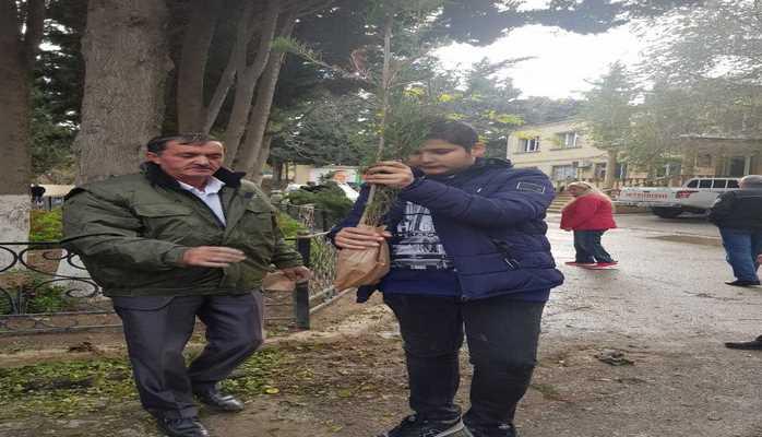 Жителям Баку раздали саженцы для закладки новых зеленых насаждений