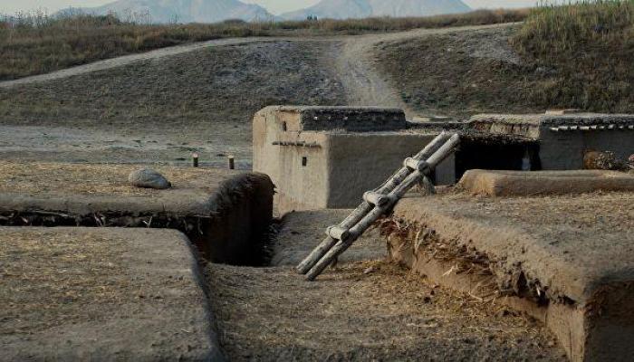 Древние туалеты помогли ученым выяснить, как люди одомашнили коз и овец