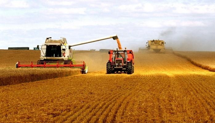 Джафар Ибрагимли: Сельское хозяйство должно развиваться как экстенсивным, так и интенсивным способом