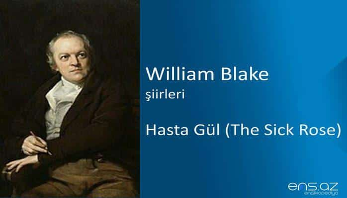 William Blake - Hasta Gül (The Sick Rose)