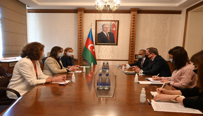 Глава МИД Азербайджана встретился с руководителем представительства МККК в стране