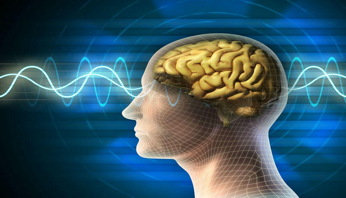 Beyinin ocaqlı patologiyaları