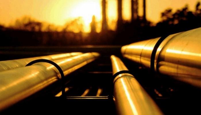 Bu il Türkiyə ərazisi ilə 33,5 mln bareldən çox BTC nefti nəql edilib