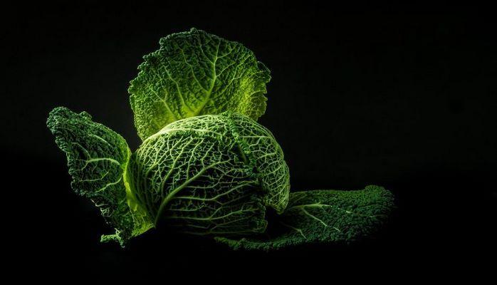 Эксперты выяснили, какая из разновидностей капусты самая полезная