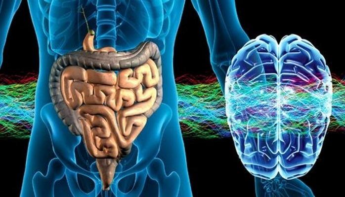 Возрастные изменения в кишечнике повысили риск  развития сердечно-сосудистых заболеваний.