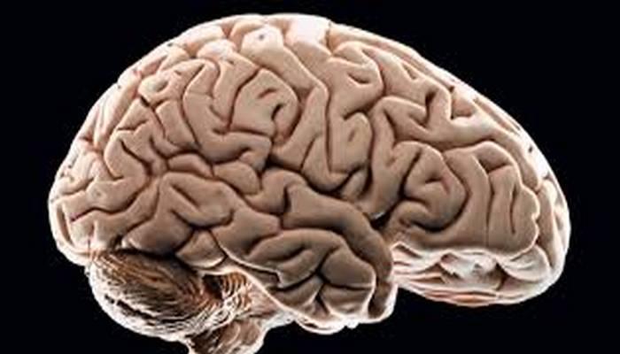 Beynin Yaşlanmasını Durdurmak için formül bulundu mutlaka uygulanmalı