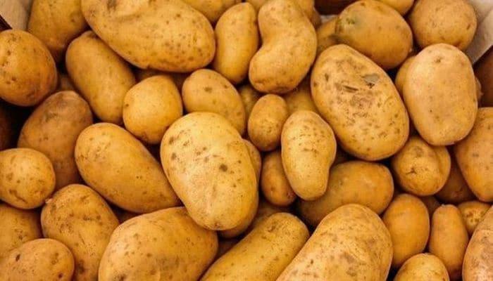 Cтало известно, какой картофель нельзя употреблять в пищу