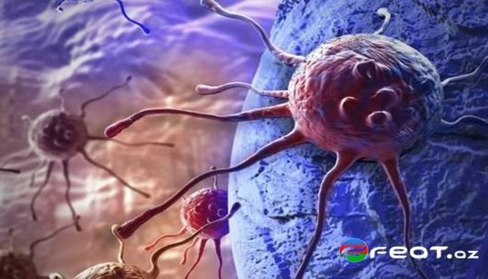 Как и когда появился рак?