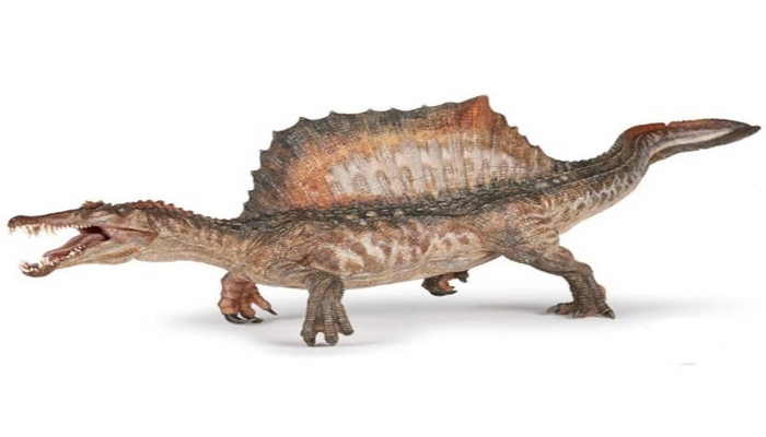 Bilim insanlarından yeni dinozor keşfi: Spinosaurusların yüzdüğü kanıtlandı