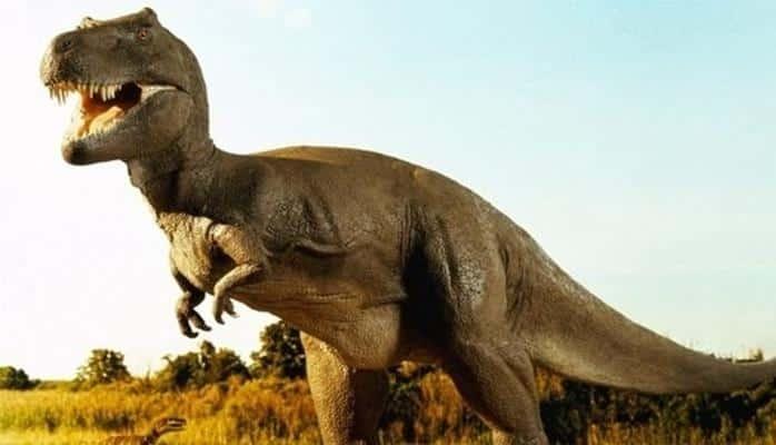 İnşaat Kazısında Milyonlarca Yıllık Dinozor Kemikleri Bulundu