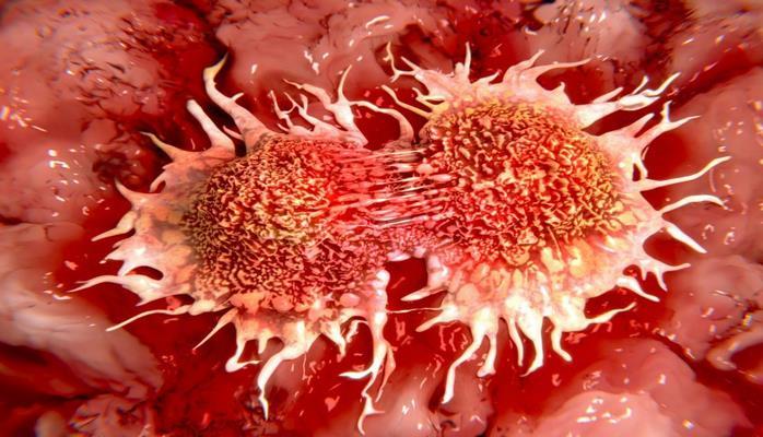 Ученые нашли механизм предотвращения рака