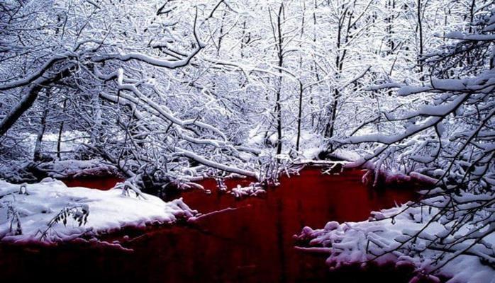 Из фильма ужасов: озеро крови обнаружили в России