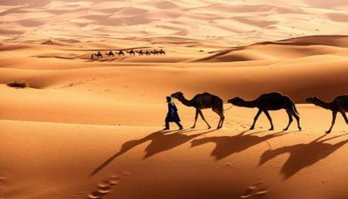 Сахара может стать всемирной солнечной электростанцией