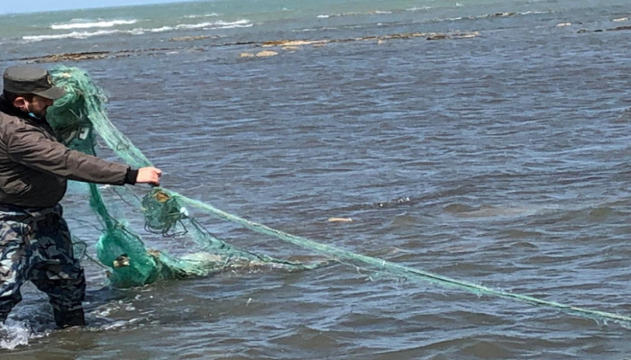 Водоемы Азербайджана очищают от запрещенных рыболовных снастей