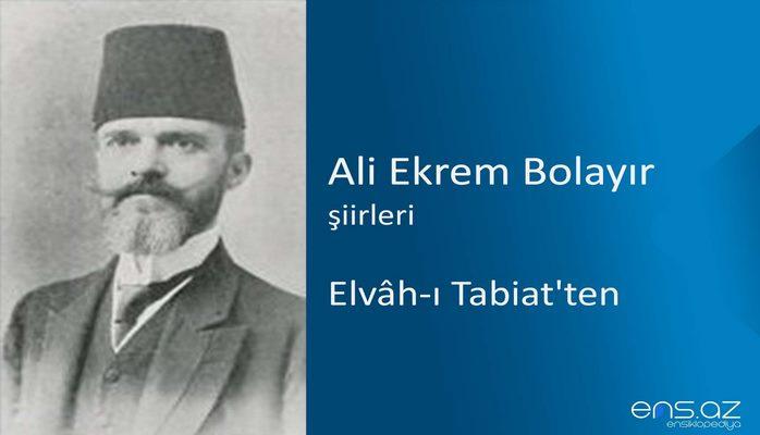 Ali Ekrem Bolayır - Elvah-ı Tabiat'ten