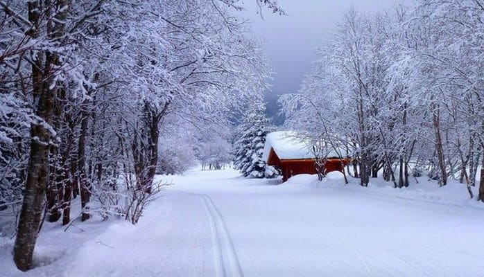 В Алтыагаче высота снежного покрова достигла 22 см
