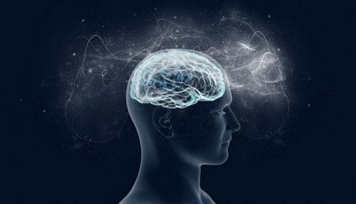 Не пройдя идентификацию, мозг способен распознать возраст и пол человека.