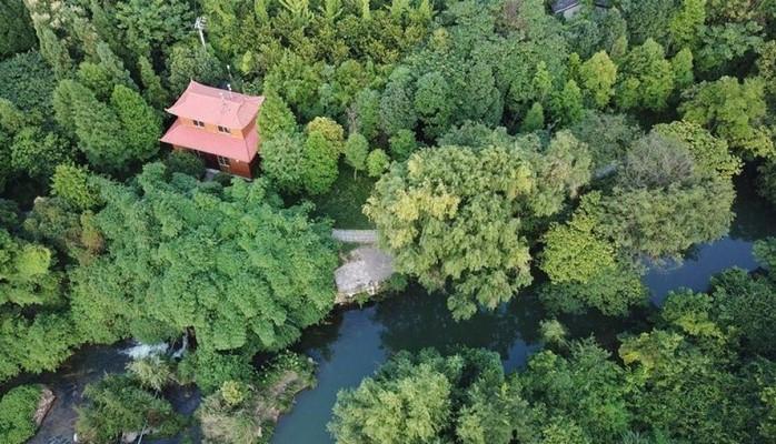Китай обнародовал Белую книгу об экологической ситуации в важных водно-болотных угодьях на своей территории