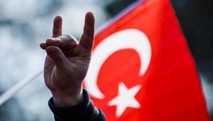 """Der Tagesspiegel: """"Türk millətçiləri böyük Turan dövləti qurmaq istəyir"""""""