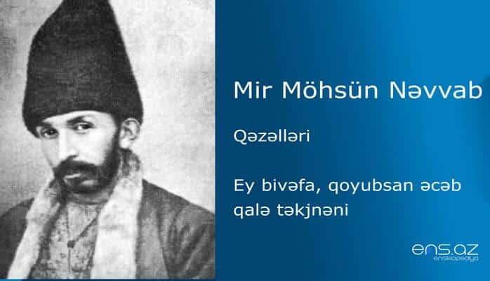 Mir Möhsün Nəvvab - Ey bivəfa, qoyubsan əcəb qalə təkjnəni