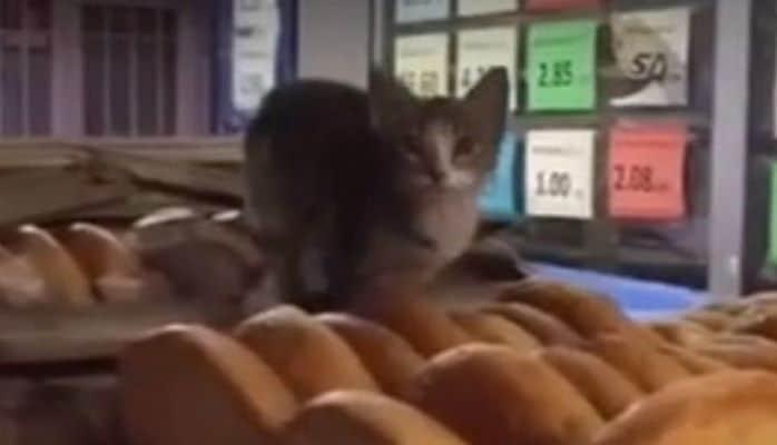 Неприятная ситуация в бакинском магазине