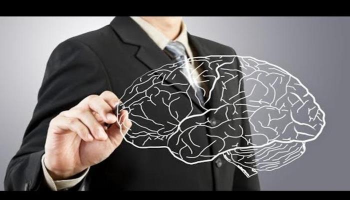 Вот все научные способы улучшить работу мозга