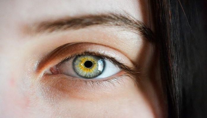 Ученые выяснили, какие гены отвечают за цвет бровей
