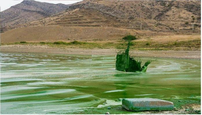 İşğalçı Ermənistan Araz çayında ekoloji fəlakətə səbəb olub