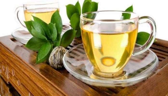 Yaşıl çay cövhəri xərçəngin dərmanı imiş