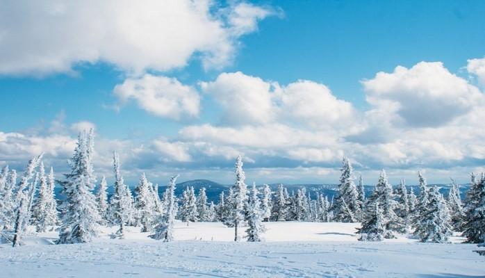 Ученые утверждают, что в 2020 году на Земле наступит Малый ледниковый период