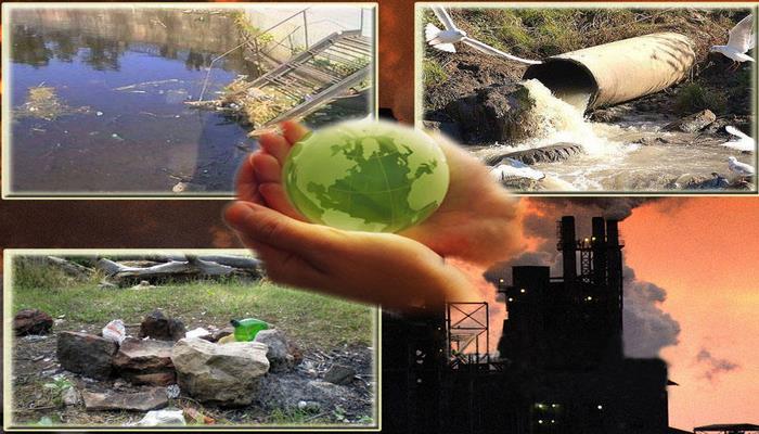 Ekoloji problemlər