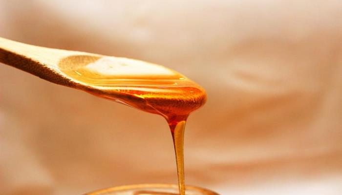 Медики назвали шесть причин для ежедневного употребления меда