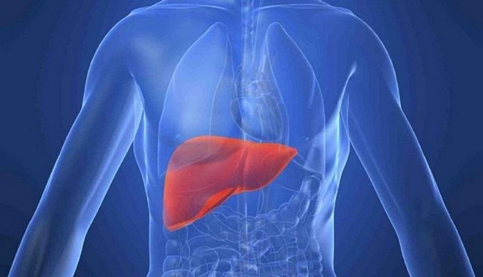 Karaciğer yağlanması nasıl geçer? Karaciğer yağlanmasına doğal kür! Neden zayıflayamıyorum?