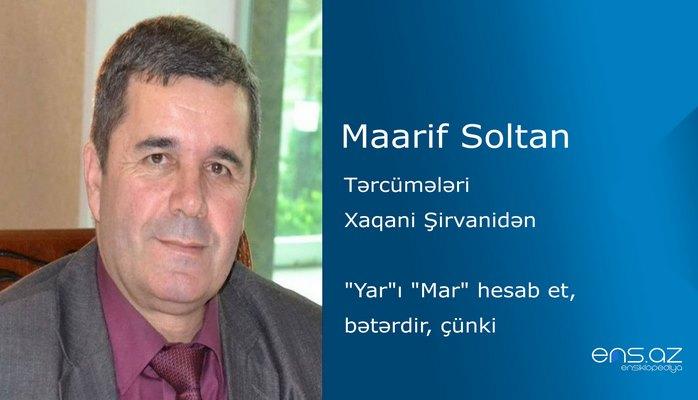 """Maarif Soltan - """"Yar""""ı """"Mar"""" hesab et, bətərdir, çünki"""