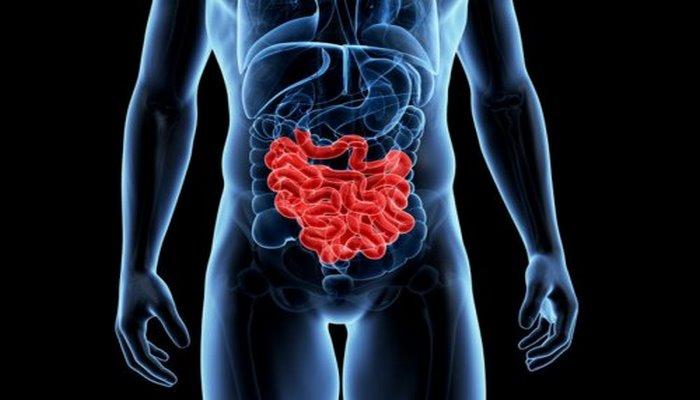 Эксперты поведали о суперпродуктах, улучшающих работу кишечника