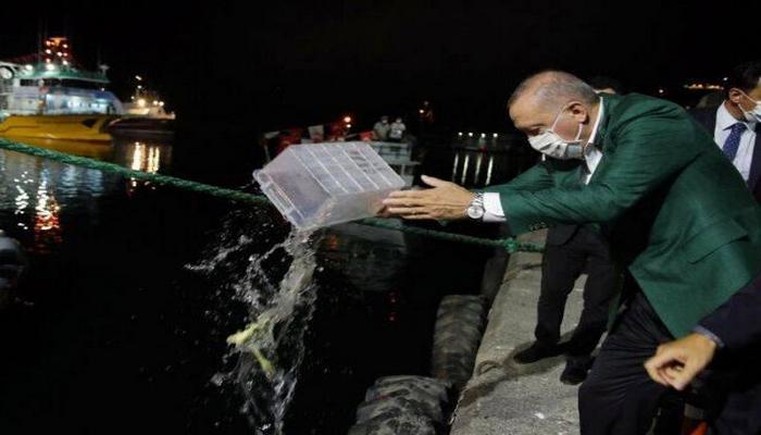 Ərdoğanın satdığı balığı 1,7 milyona aldılar