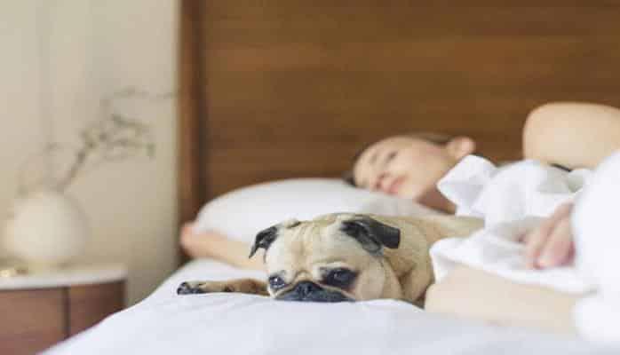 Как легко заснуть, даже если не хочется