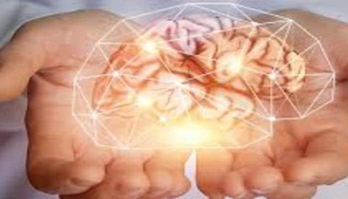 Как кишечник влияет на мозг