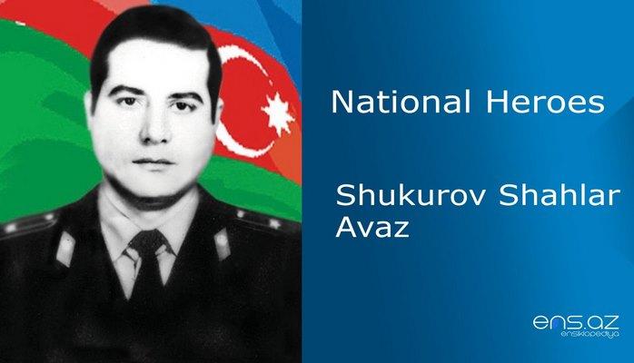 Shukurov Shahlar Avaz