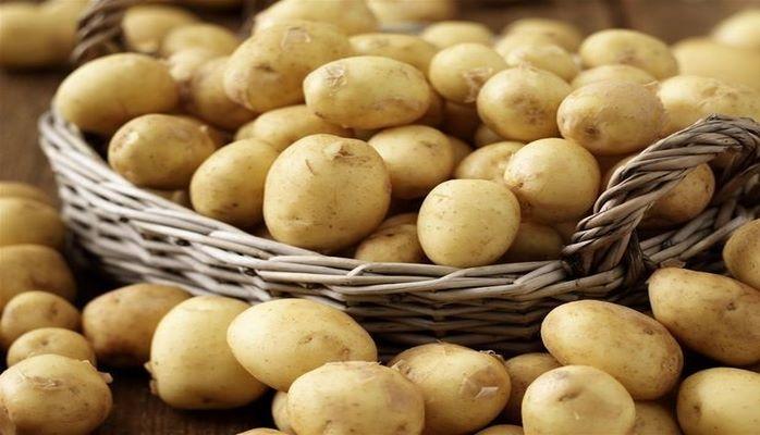 В Азербайджан хотели завезти тонны зараженного картофеля