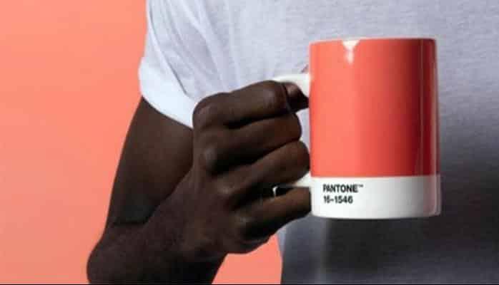 Pantone, 2019'un rengini açıkladı: Yaşama sevinci aşılıyor