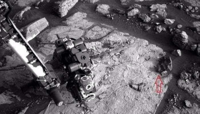 NASA-nın insanlardan gizlətdiyi gerçəklər: Marsda əslində hansı canlılar yaşayır?
