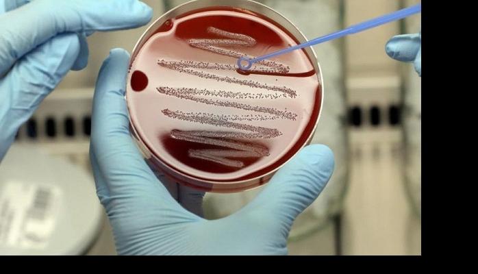 Обнаружены гены, отвечающие засмысл жизни
