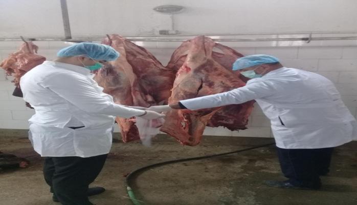 В Сумгайыте уничтожены сотни килограмм непригодной говядины